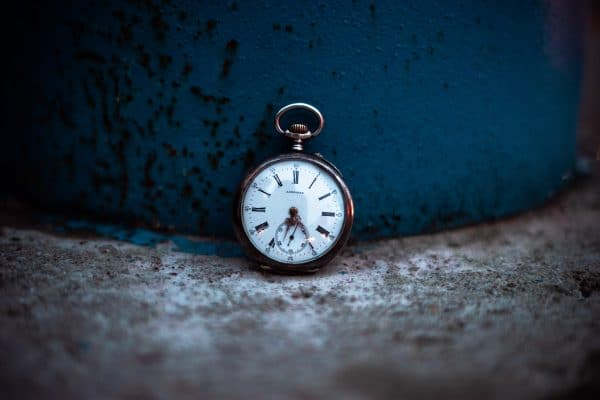 Timeless Dropshipping Niches for Your Business